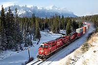 IMAGE: http://railpictures.net/images/d1/0/4/2/5042.1386555592.tb.jpg